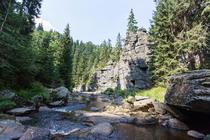 Das wildromatische Schwarzwassertal im Erzgebirge.